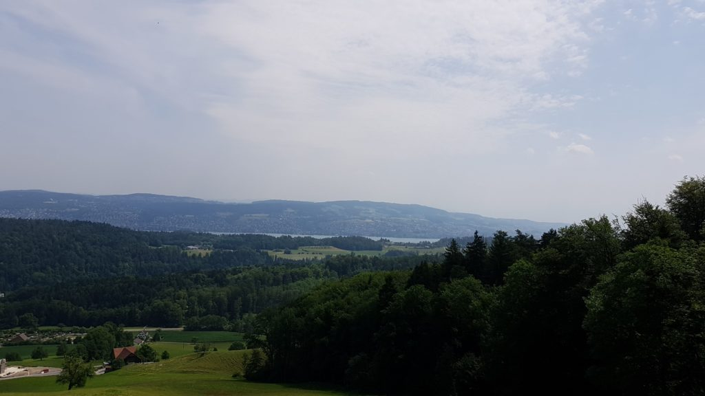 Blick vom Müliberg